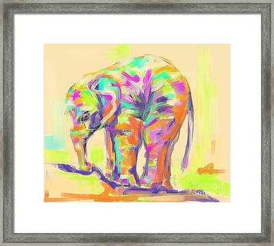 Wildlife Baby Elephant Framed Print