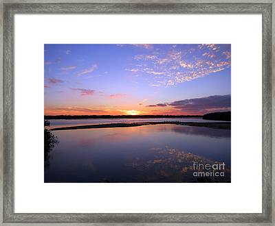 Wildlife Drive Sunset Framed Print by Patricia Januszkiewicz