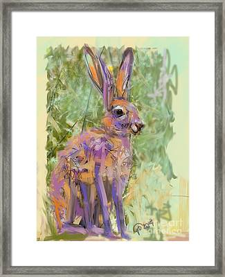 Wildlife Haas Framed Print by Go Van Kampen
