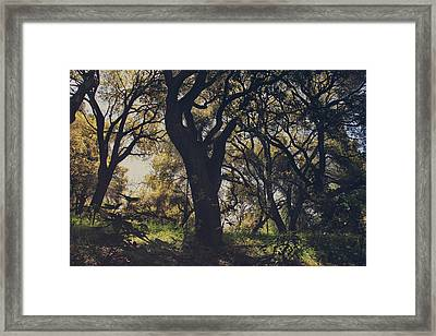 Wildly And Desperately My Arms Reached Out To You Framed Print by Laurie Search