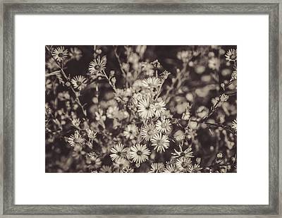 Wildly Unified Framed Print