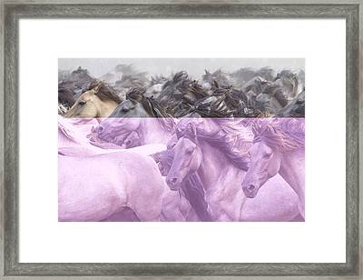 Wildpferde Framed Print