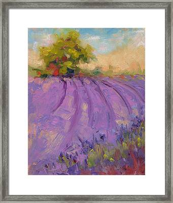 Framed Print featuring the painting Wildrain Lavender Farm by Talya Johnson