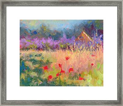 Wildrain Retreat - Lavender And Poppies Framed Print