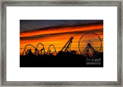 Wildwood At Dawn Framed Print