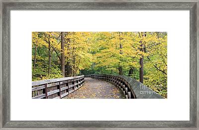 Wildwood Boardwalk 20x40 Framed Print