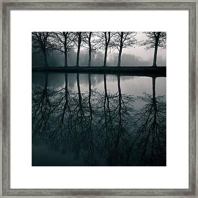 Wilhelminapark Framed Print by Dave Bowman