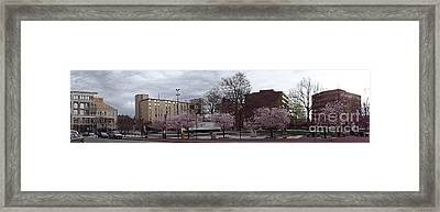 Framed Print featuring the photograph Wilkes-barre In Bloom by Christina Verdgeline