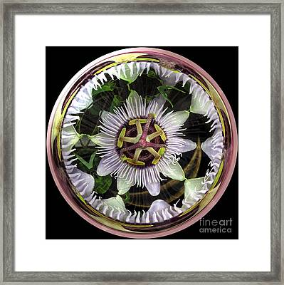 Will It Go Round In Circles Framed Print by Renee Trenholm