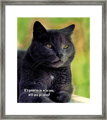 Will You Go Away Framed Print by Mike Flynn