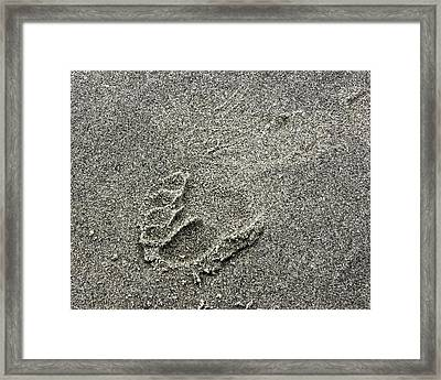 Will You Walk With Me? Framed Print by Rhonda McDougall