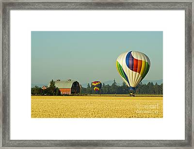 Framed Print featuring the photograph Willamette Valley Ballooning by Nick  Boren