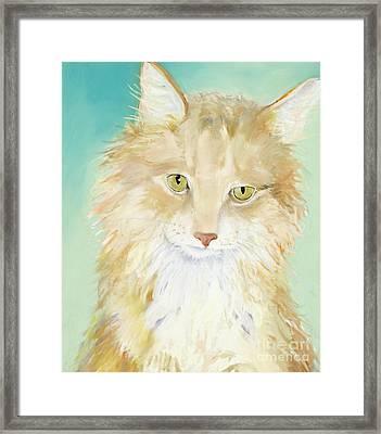 Willard Framed Print