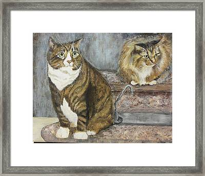 William And Charles Framed Print by Maureen Pisano