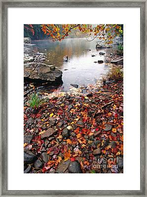 Williams River Monongahela National Forest Framed Print by Thomas R Fletcher