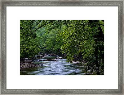 Williams River Scenic Backway Framed Print by Thomas R Fletcher