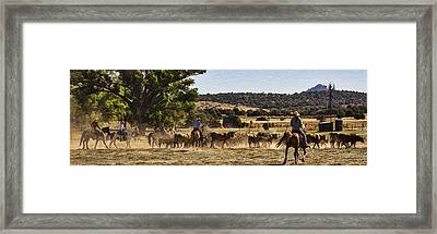 Williamson Valley Roundup 6 Framed Print by Priscilla Burgers