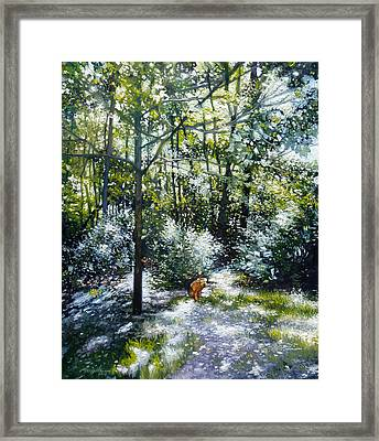 Willow Framed Print by Gregg Hinlicky