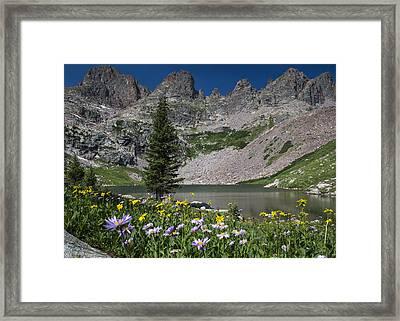 Willow Lake Framed Print