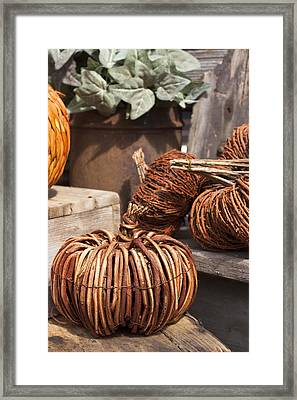 Framed Print featuring the photograph Willow Pumpkins by Patrice Zinck
