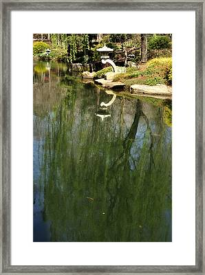 Willow Reflection 2 Framed Print