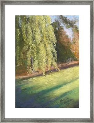 Willow Way Framed Print by Melinda Saminski