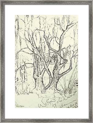 Willows By The Lake Framed Print