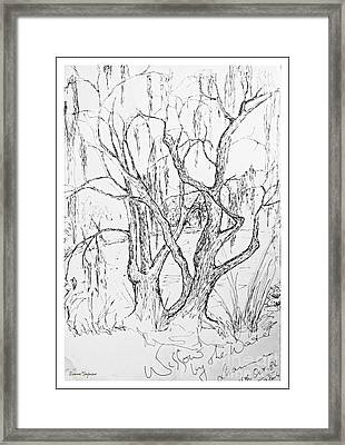 Willows By The Lake - Within Border Framed Print