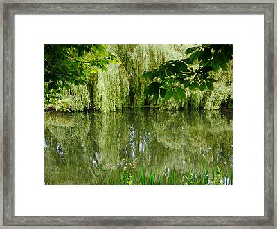 Framed Print featuring the photograph Willows Reflected by Winifred Butler