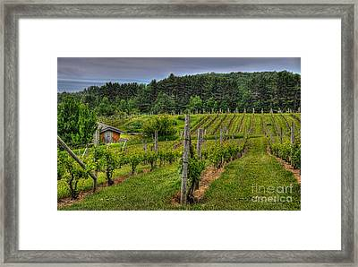 Framed Print featuring the photograph Willows Winery by Trey Foerster