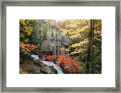 Willsons Ruins In Gatineau Park In Quebec Framed Print by Rob Huntley