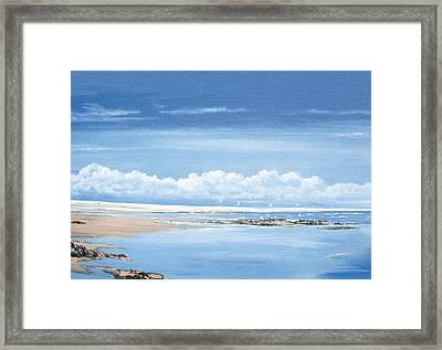 Winchelsea Gulls Framed Print