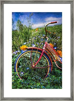 Wind At Your Back Framed Print by Debra and Dave Vanderlaan