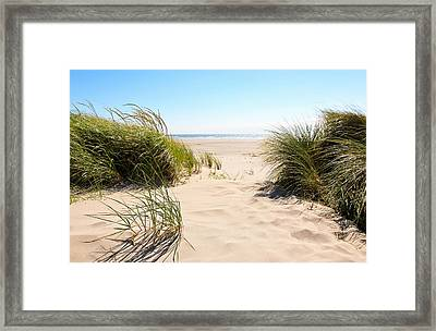 Wind Blowing In The Sand Framed Print
