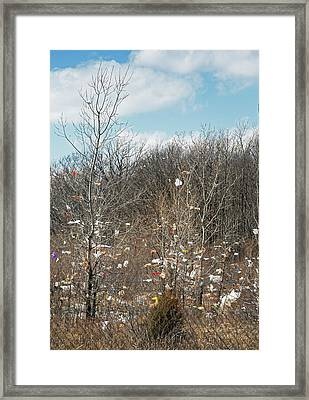 Wind-blown Rubbish Framed Print by Jim West