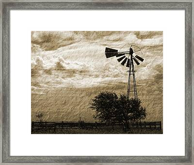Wind Blown Framed Print by Tony Grider
