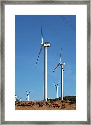 Wind Generators Or Windmills Framed Print by Panoramic Images