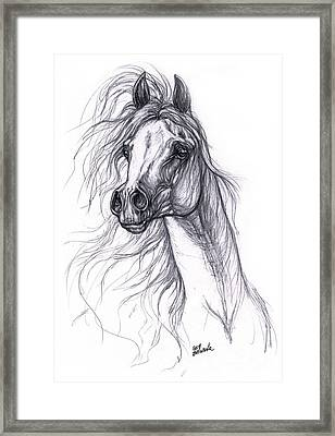 Wind In The Mane 2 Framed Print