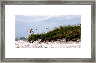 Wind In The Seagrass Framed Print by Ian  MacDonald