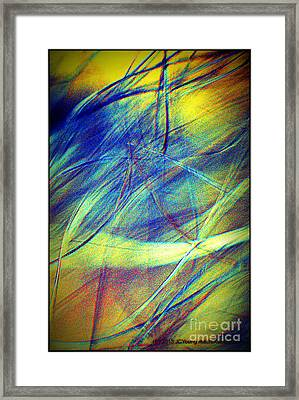 Wind Framed Print by JCYoung MacroXscape