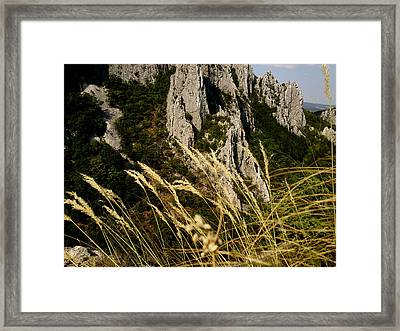 Framed Print featuring the photograph Wind by Lucy D
