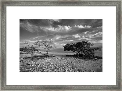 Wind On The Key Framed Print by Stephen Mack