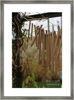 Wind Song - 3 Framed Print