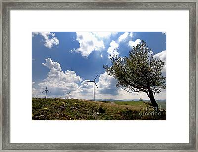 Wind Turbine And Tilted Tree Isolated In The Countryside. Framed Print by Bernard Jaubert