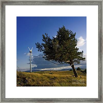 Wind Turbine And Tree On The Plateau Of  Cezallier. Auvergne. France. Framed Print by Bernard Jaubert