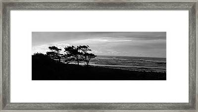 Windblown Framed Print