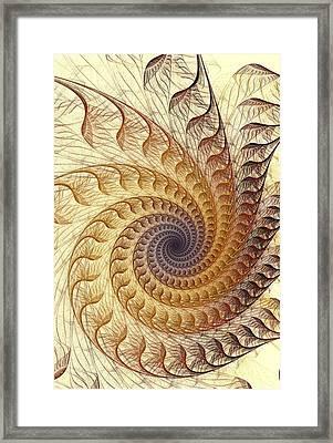 Winding Framed Print by Anastasiya Malakhova