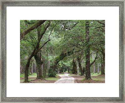 Winding Dirt Road Framed Print