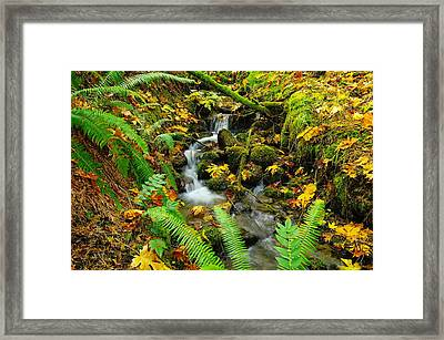Winding From Within The Green Framed Print by Jeff Swan