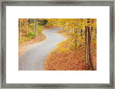 Winding Into Fall Framed Print